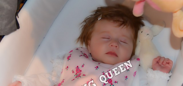Official EHQ Photos –  Baby Show